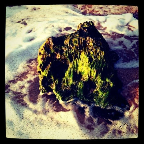 Beach Moments