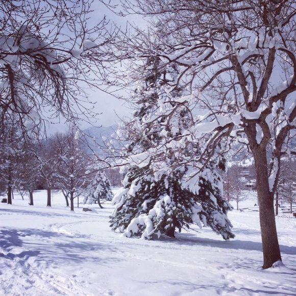 image from http://enchantedmama.typepad.com/.a/6a010536a29a8a970b01901b846821970b-pi